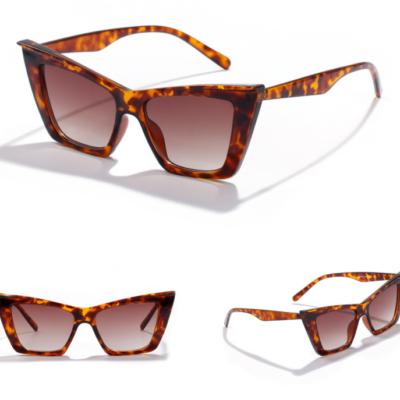 Lexington 95088-2 Cat Eye Tinted Sunglasses Tortoise Brown